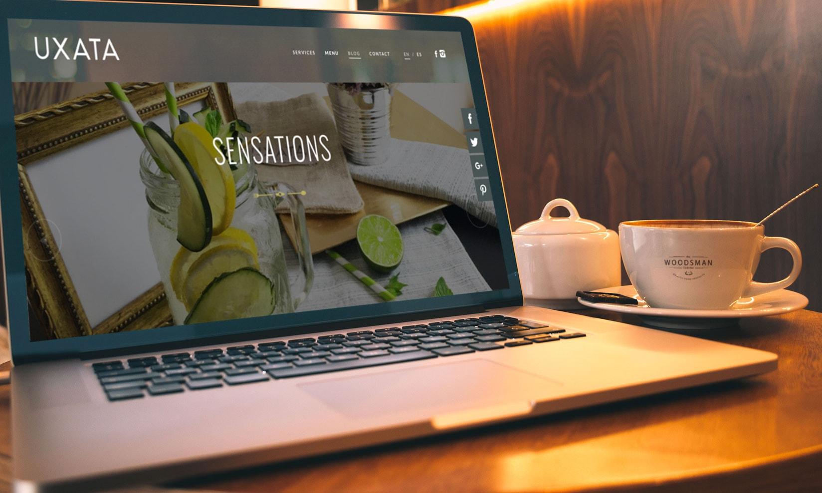 diseño web playa del carmen