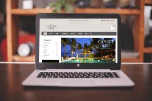 posicionamiento web playa del carmen