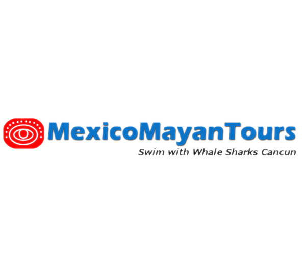 desarrollo wordpress playa del carmen